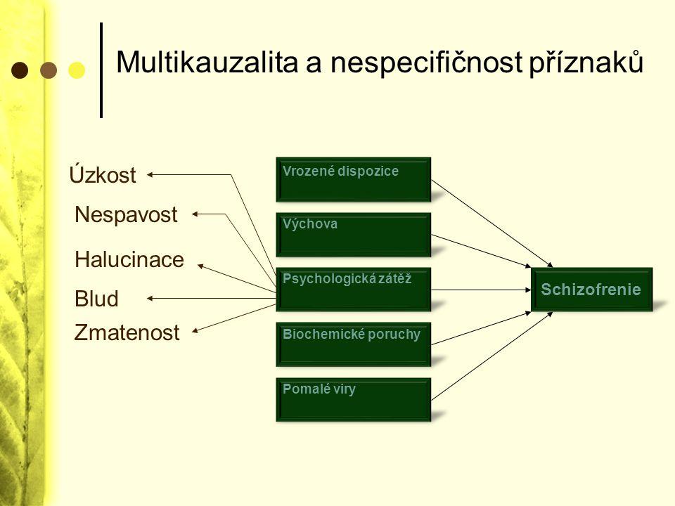 Multikauzalita a nespecifičnost příznaků Vrozené dispozice Schizofrenie Výchova Psychologická zátěž Biochemické poruchy Pomalé viry Úzkost Nespavost H