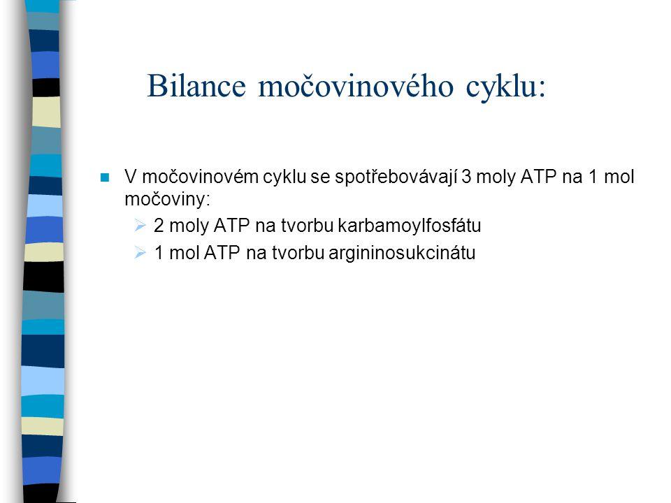Bilance močovinového cyklu: V močovinovém cyklu se spotřebovávají 3 moly ATP na 1 mol močoviny:  2 moly ATP na tvorbu karbamoylfosfátu  1 mol ATP na