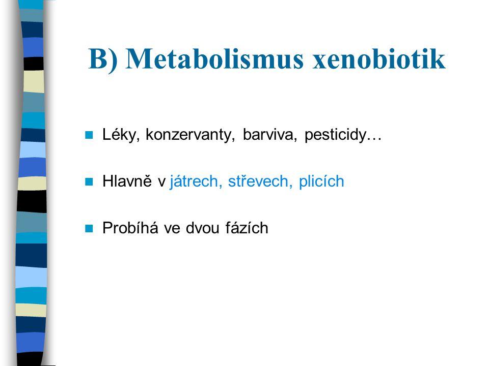 B) Metabolismus xenobiotik Léky, konzervanty, barviva, pesticidy… Hlavně v játrech, střevech, plicích Probíhá ve dvou fázích