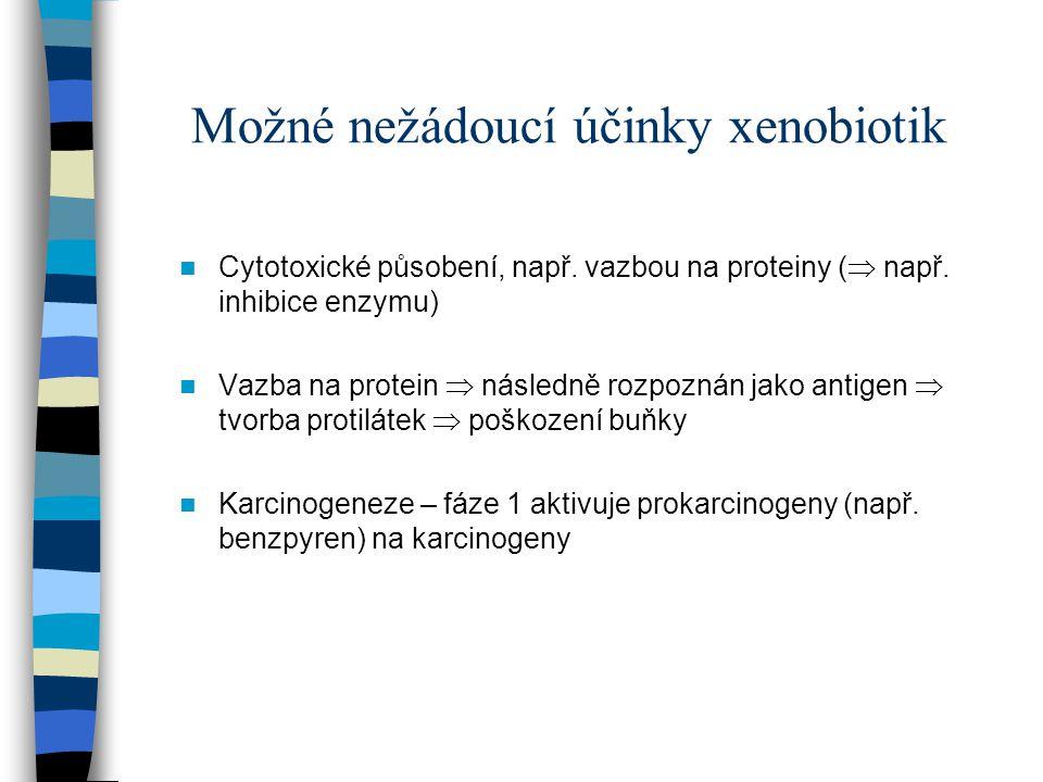 Možné nežádoucí účinky xenobiotik Cytotoxické působení, např. vazbou na proteiny (  např. inhibice enzymu) Vazba na protein  následně rozpoznán jako