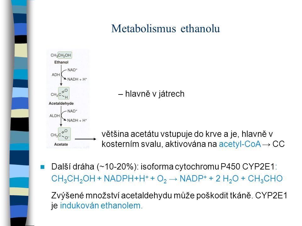 Metabolismus ethanolu Další dráha (~10-20%): isoforma cytochromu P450 CYP2E1: CH 3 CH 2 OH + NADPH+H + + O 2 → NADP + + 2 H 2 O + CH 3 CHO Zvýšené mno