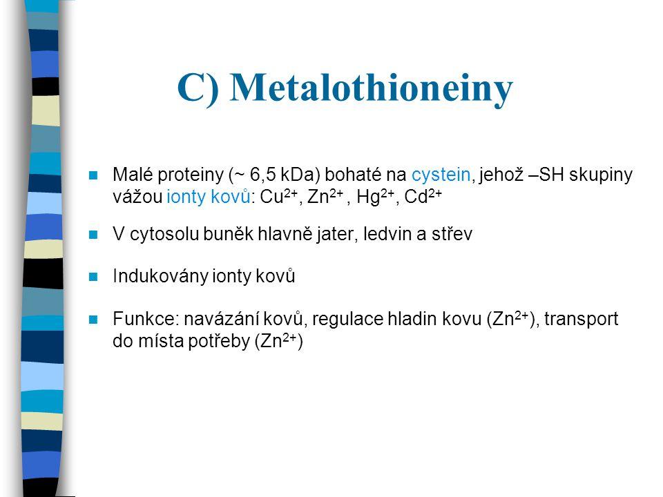 C) Metalothioneiny Malé proteiny ( ~ 6,5 kDa) bohaté na cystein, jehož –SH skupiny vážou ionty kovů: Cu 2+, Zn 2+, Hg 2+, Cd 2+ V cytosolu buněk hlavn