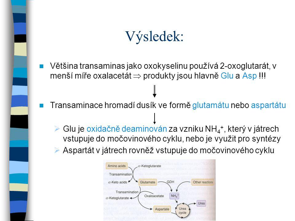 Výsledek: Většina transaminas jako oxokyselinu používá 2-oxoglutarát, v menší míře oxalacetát  produkty jsou hlavně Glu a Asp !!! Transaminace hromad