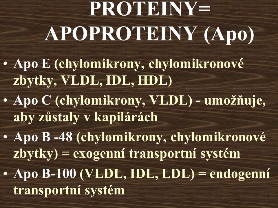 PROTEINY= APOPROTEINY (Apo) Apo E (chylomikrony, chylomikronové zbytky, VLDL, IDL, HDL) Apo C (chylomikrony, VLDL) - umožňuje, aby zůstaly v kapilárách Apo B -48 (chylomikrony, chylomikronové zbytky) = exogenní transportní systém Apo B-100 (VLDL, IDL, LDL) = endogenní transportní systém