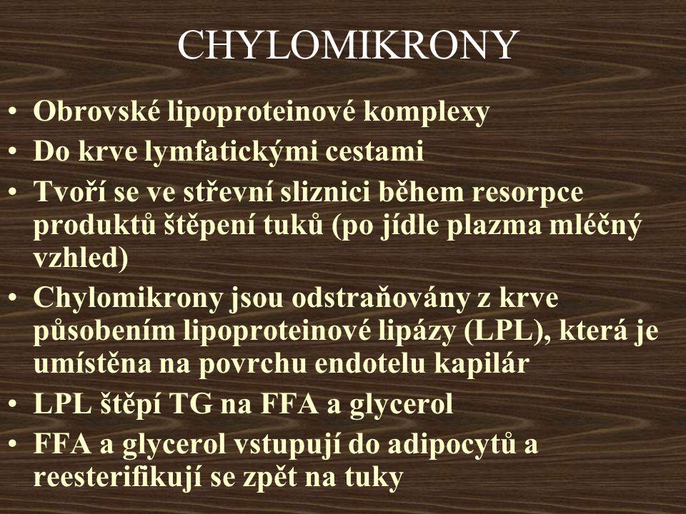 CHYLOMIKRONY Obrovské lipoproteinové komplexy Do krve lymfatickými cestami Tvoří se ve střevní sliznici během resorpce produktů štěpení tuků (po jídle plazma mléčný vzhled) Chylomikrony jsou odstraňovány z krve působením lipoproteinové lipázy (LPL), která je umístěna na povrchu endotelu kapilár LPL štěpí TG na FFA a glycerol FFA a glycerol vstupují do adipocytů a reesterifikují se zpět na tuky