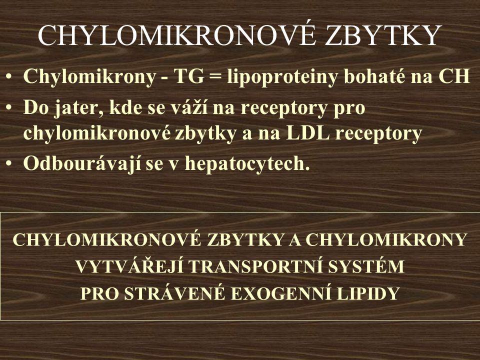 CHYLOMIKRONOVÉ ZBYTKY Chylomikrony - TG = lipoproteiny bohaté na CH Do jater, kde se váží na receptory pro chylomikronové zbytky a na LDL receptory Od
