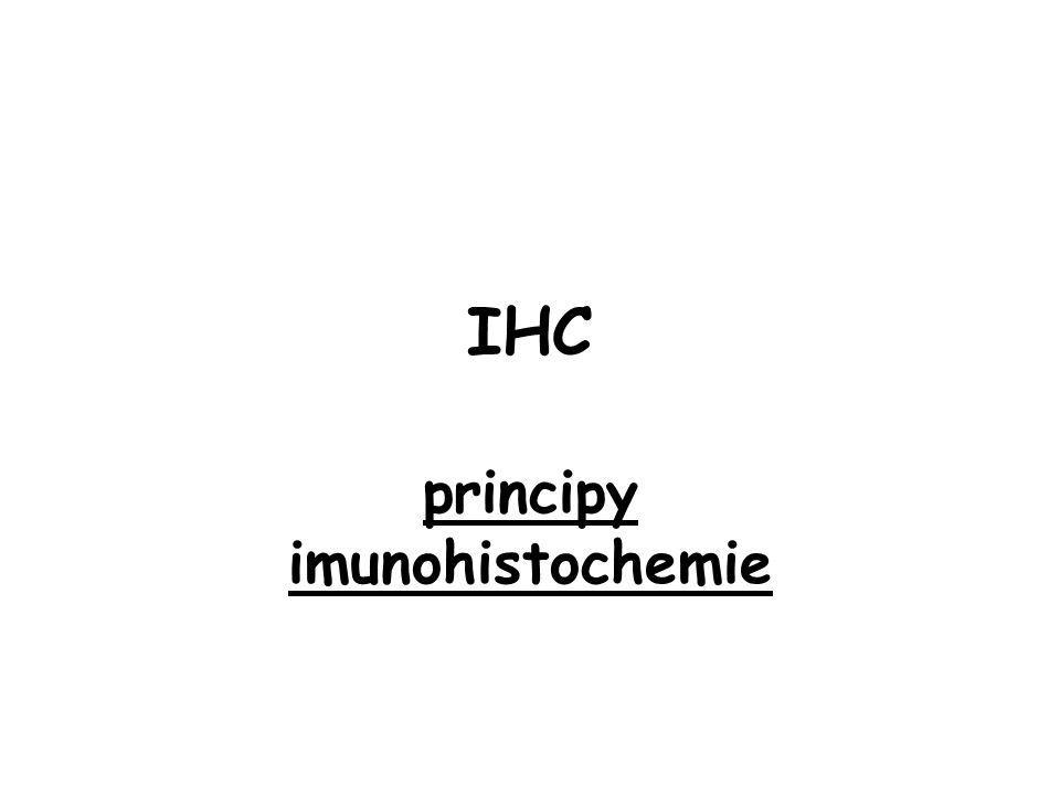 IHC principy imunohistochemie