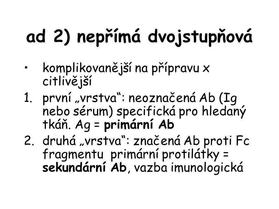 """ad 2) nepřímá dvojstupňová komplikovanější na přípravu x citlivější 1.první """"vrstva"""": neoznačená Ab (Ig nebo sérum) specifická pro hledaný tkáň. Ag ="""