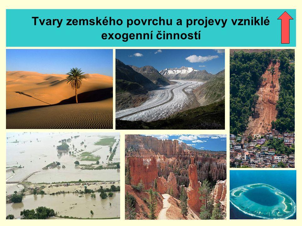 Tvary zemského povrchu a projevy vzniklé exogenní činností