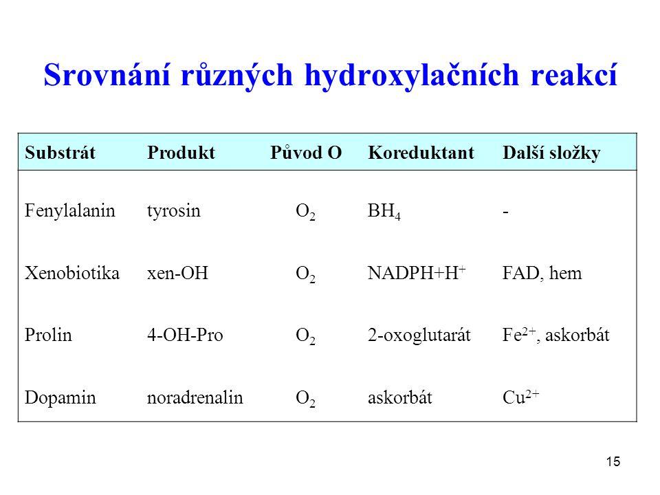 15 Srovnání různých hydroxylačních reakcí SubstrátProduktPůvod OKoreduktantDalší složky Fenylalanin Xenobiotika Prolin Dopamin tyrosin xen-OH 4-OH-Pro