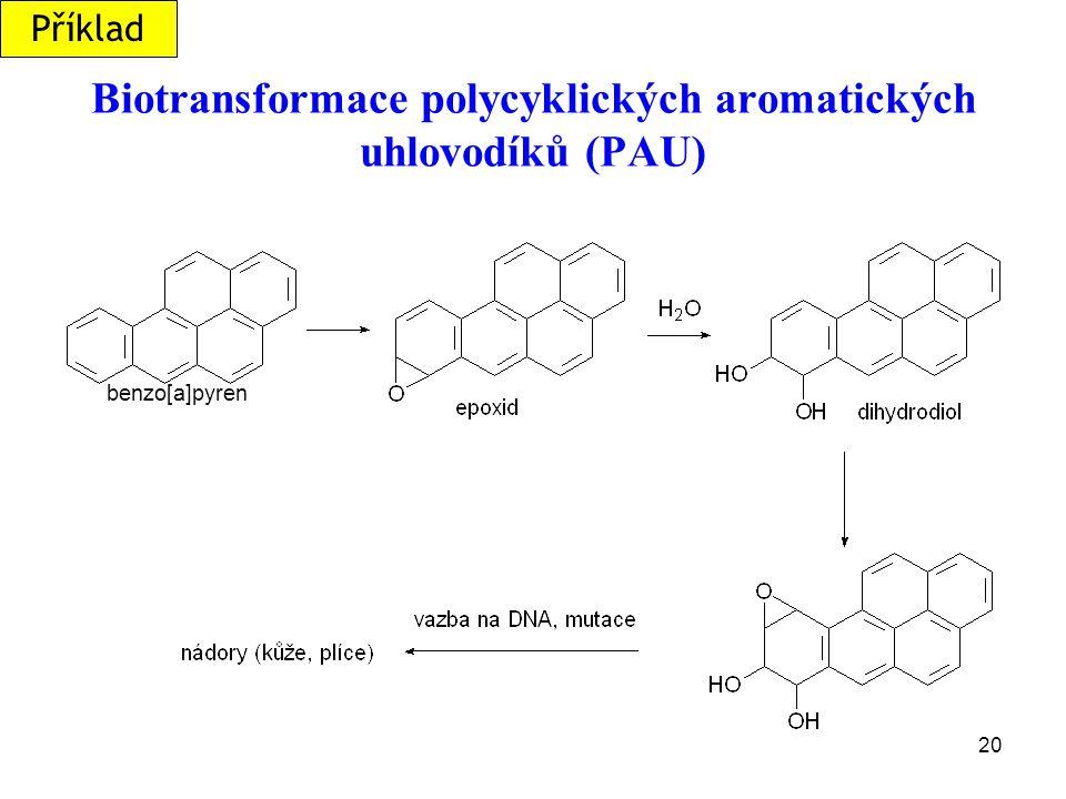 20 Biotransformace polycyklických aromatických uhlovodíků (PAU) benzo[a]pyren Příklad