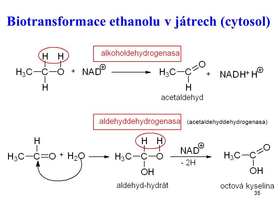 35 Biotransformace ethanolu v játrech (cytosol) (acetaldehyddehydrogenasa)