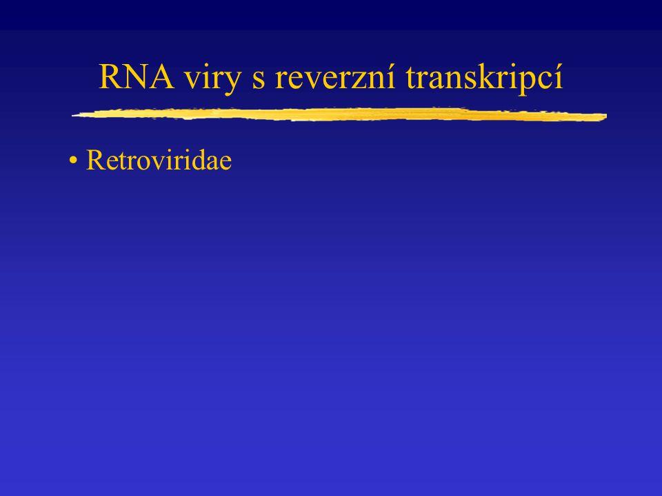 Retroviridae RNA viry s reverzní transkripcí