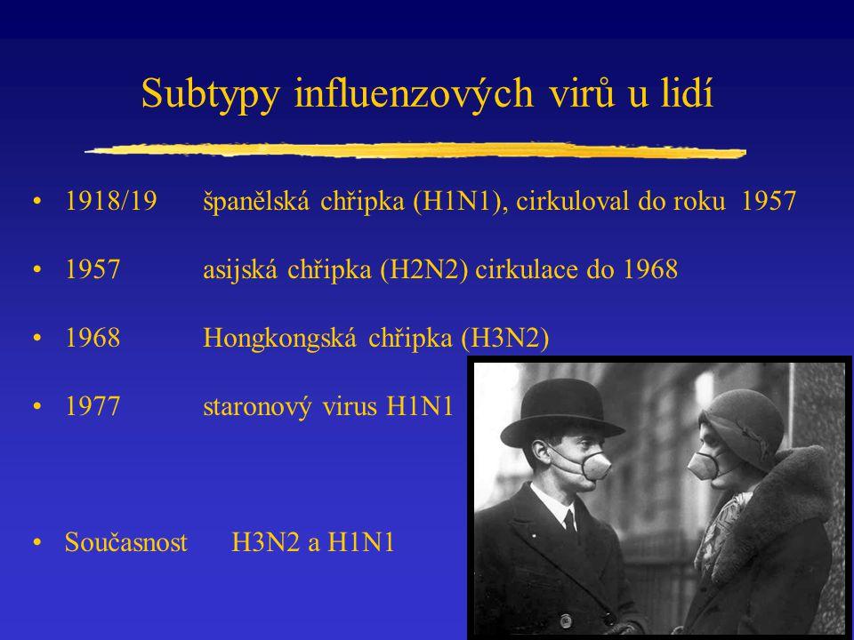 Subtypy influenzových virů u lidí 1918/19španělská chřipka (H1N1), cirkuloval do roku 1957 1957asijská chřipka (H2N2) cirkulace do 1968 1968Hongkongsk