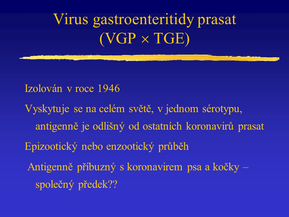 Virus gastroenteritidy prasat (VGP  TGE) Izolován v roce 1946 Vyskytuje se na celém světě, v jednom sérotypu, antigenně je odlišný od ostatních koron