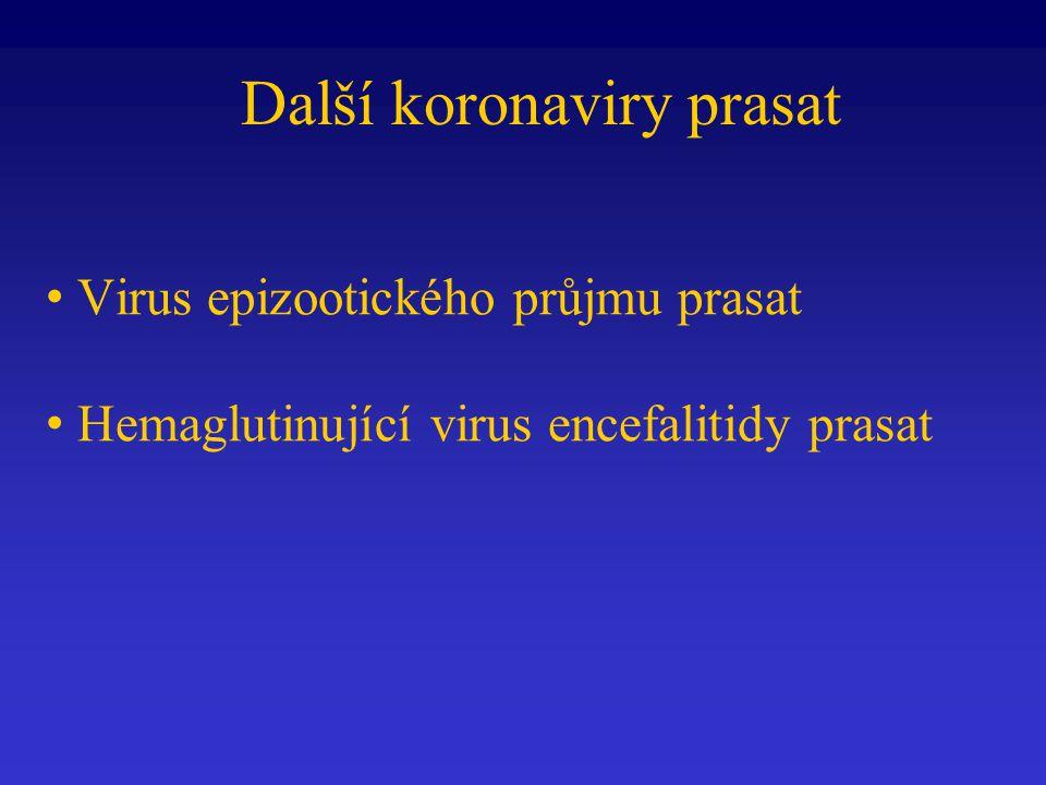 Další koronaviry prasat Virus epizootického průjmu prasat Hemaglutinující virus encefalitidy prasat