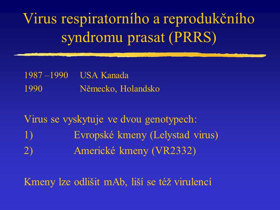 Virus respiratorního a reprodukčního syndromu prasat (PRRS) 1987 –1990USA Kanada 1990 Německo, Holandsko Virus se vyskytuje ve dvou genotypech: 1) Evr