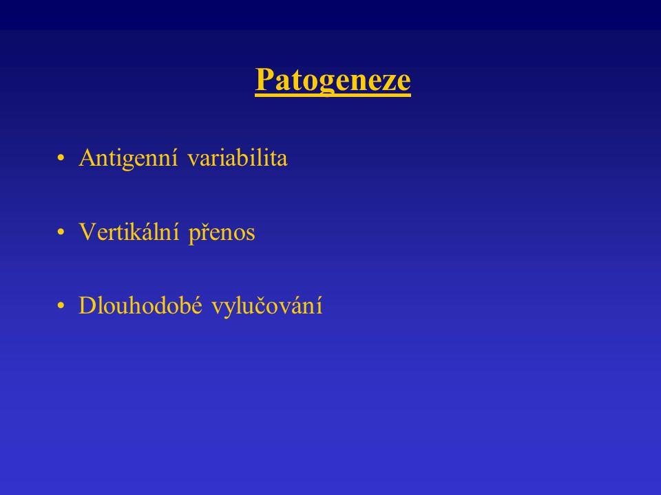 Patogeneze Antigenní variabilita Vertikální přenos Dlouhodobé vylučování