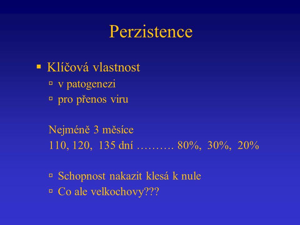 Perzistence  Klíčová vlastnost  v patogenezi  pro přenos viru Nejméně 3 měsíce 110, 120, 135 dní ………. 80%, 30%, 20%  Schopnost nakazit klesá k nul