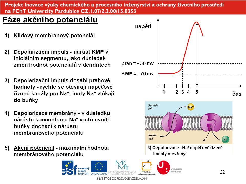 22 Fáze akčního potenciálu 1)Klidový membránový potenciál čas napětí KMP = - 70 mv práh = - 50 mv 2)Depolarizační impuls - nárůst KMP v iniciálním seg