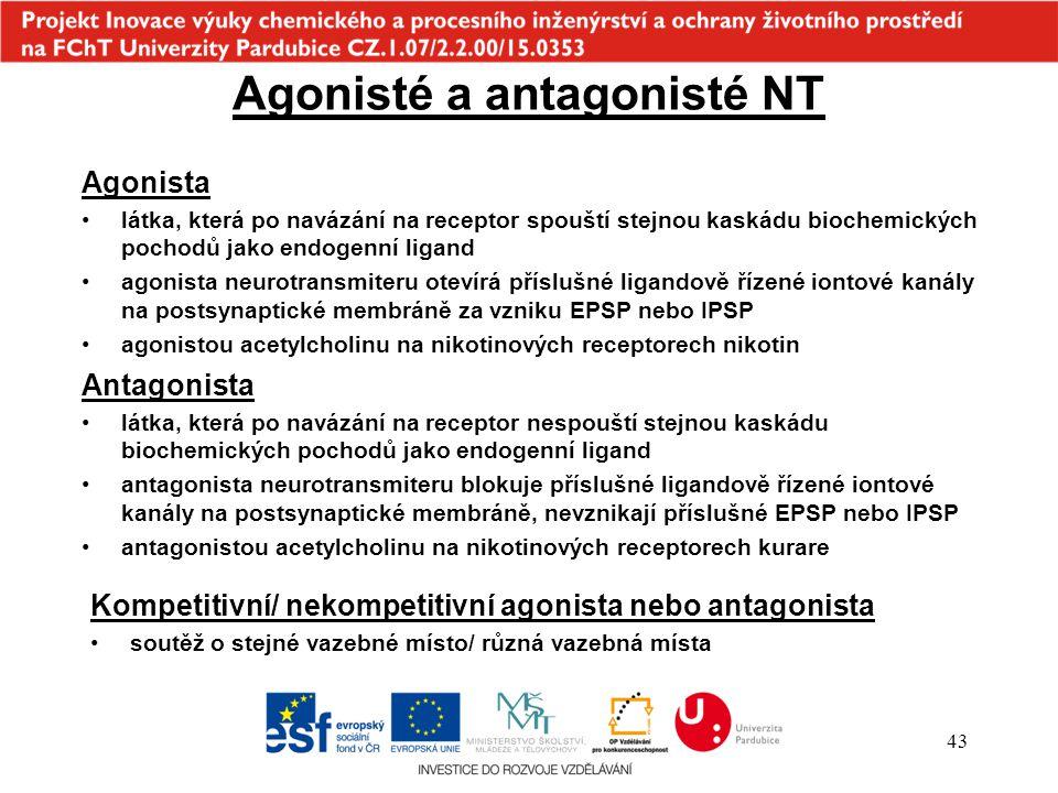 43 Agonisté a antagonisté NT Agonista látka, která po navázání na receptor spouští stejnou kaskádu biochemických pochodů jako endogenní ligand agonist