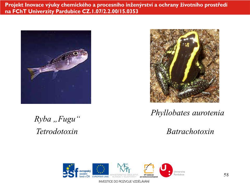 """58 Phyllobates aurotenia Batrachotoxin Ryba """"Fugu"""" Tetrodotoxin"""