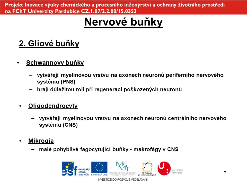 """58 Phyllobates aurotenia Batrachotoxin Ryba """"Fugu Tetrodotoxin"""