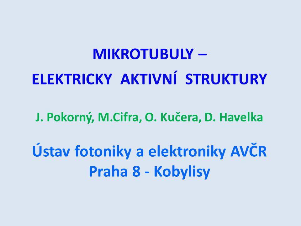 MIKROTUBULY – ELEKTRICKY AKTIVNÍ STRUKTURY J. Pokorný, M.Cifra, O. Kučera, D. Havelka Ústav fotoniky a elektroniky AVČR Praha 8 - Kobylisy