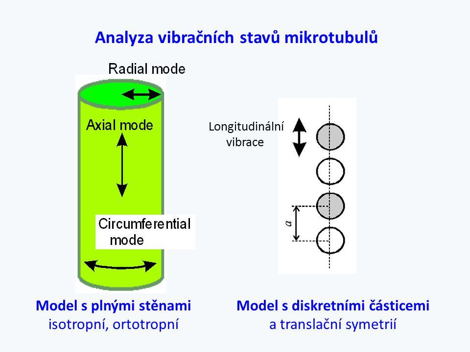 Model s plnými stěnami isotropní, ortotropní Model s diskretními částicemi a translační symetrií Analyza vibračních stavů mikrotubulů Longitudinální v