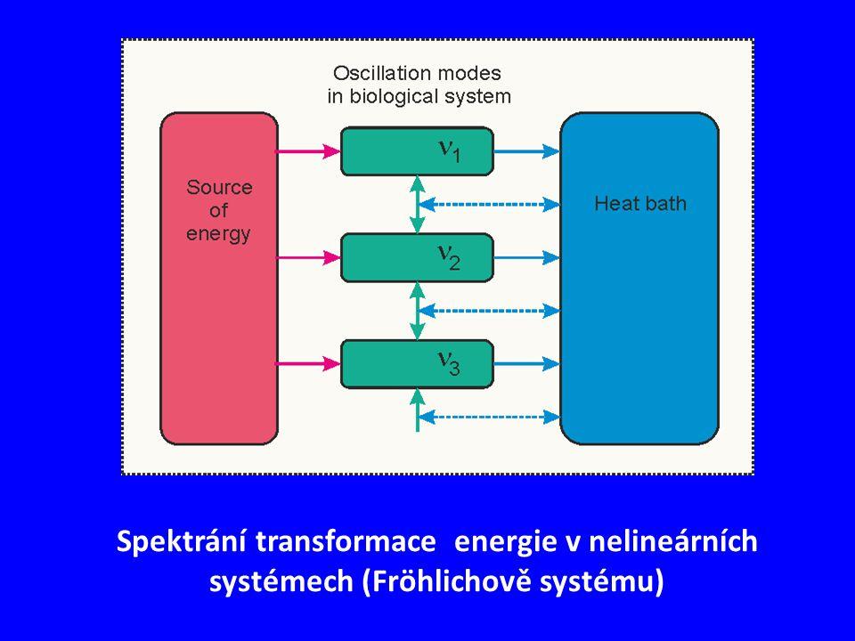 Spektrání transformace energie v nelineárních systémech (Fröhlichově systému)
