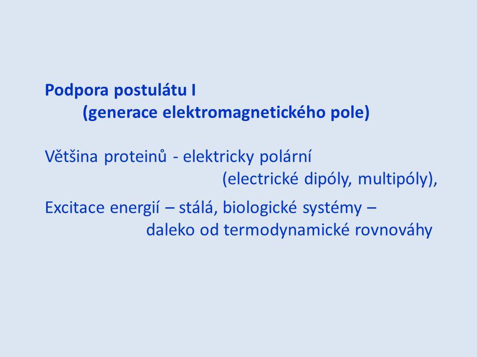 Podpora postulátu I (generace elektromagnetického pole) Většina proteinů - elektricky polární (electrické dipóly, multipóly), Excitace energií – stálá