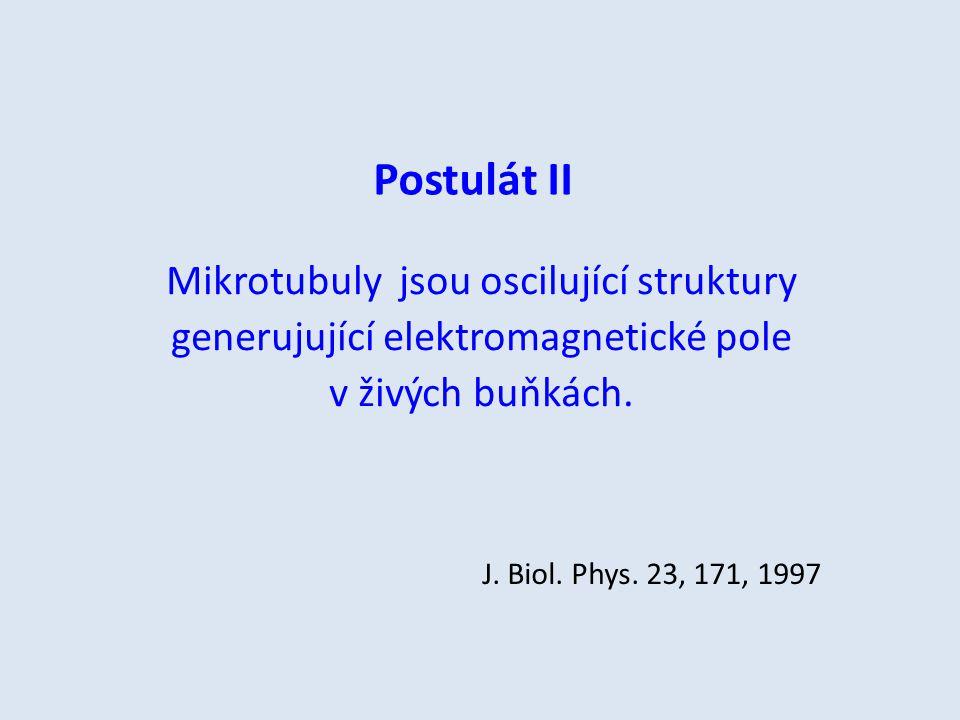 Postulát II Mikrotubuly jsou oscilující struktury generujující elektromagnetické pole v živých buňkách. J. Biol. Phys. 23, 171, 1997