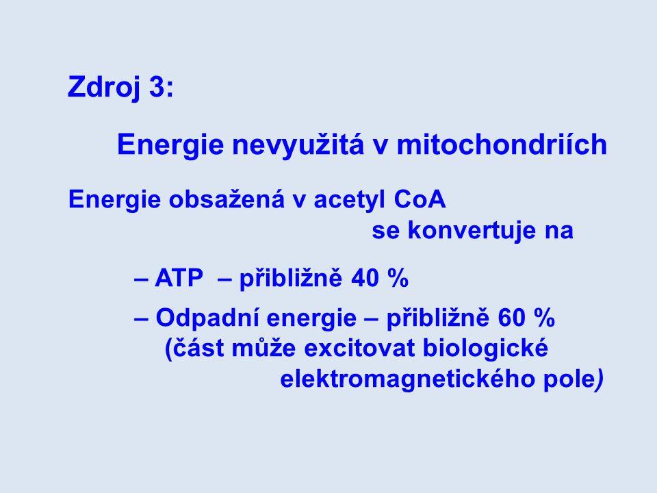 Zdroj 3: Energie nevyužitá v mitochondriích Energie obsažená v acetyl CoA se konvertuje na – ATP – přibližně 40 % – Odpadní energie – přibližně 60 % (