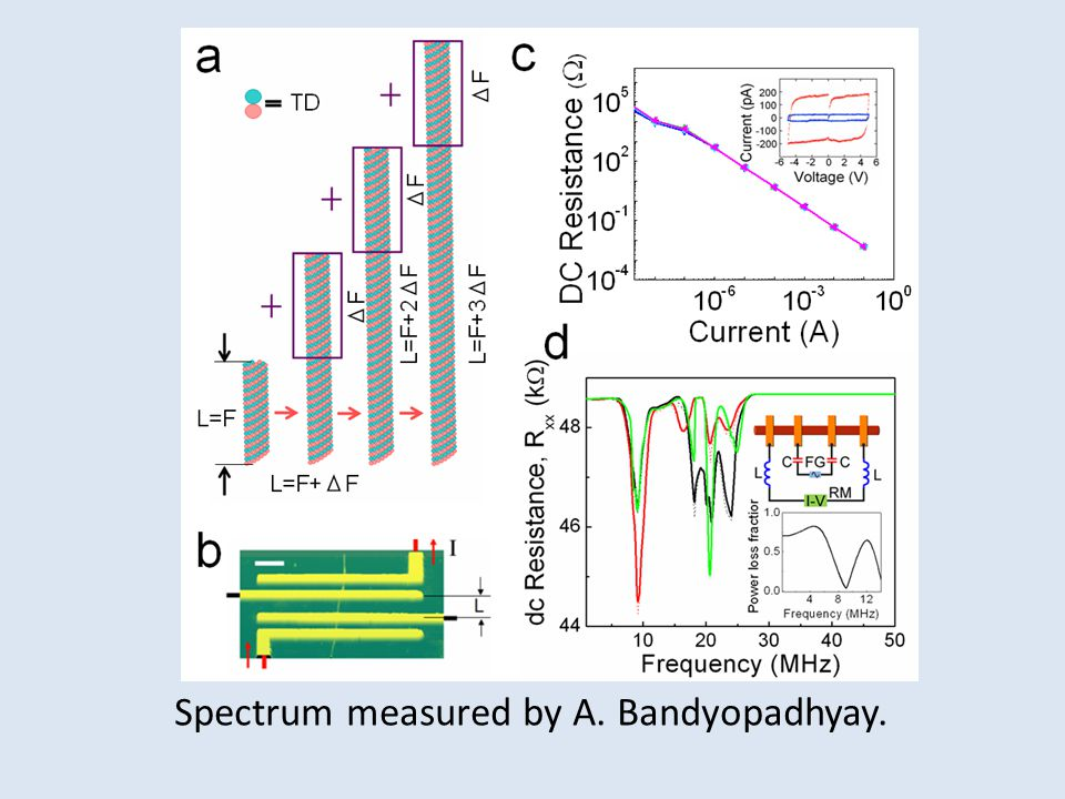Spectrum measured by A. Bandyopadhyay.