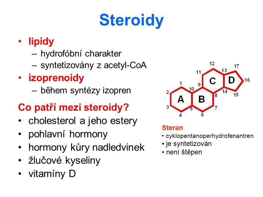 Degradace steroidních hormonů velmi krátký poločas rozpadu steranový skelet je velmi stabilní a nelze jej rozštěpit inaktivace steroidů většinou zahrnuje redukci (hydrogenace dvojné vazby) v kruhu A inaktivační reakce převládají v játrech konjugace s kyselinou glukuronovou nebo sírovou vzniklé konjugáty se vylučují z těla močí