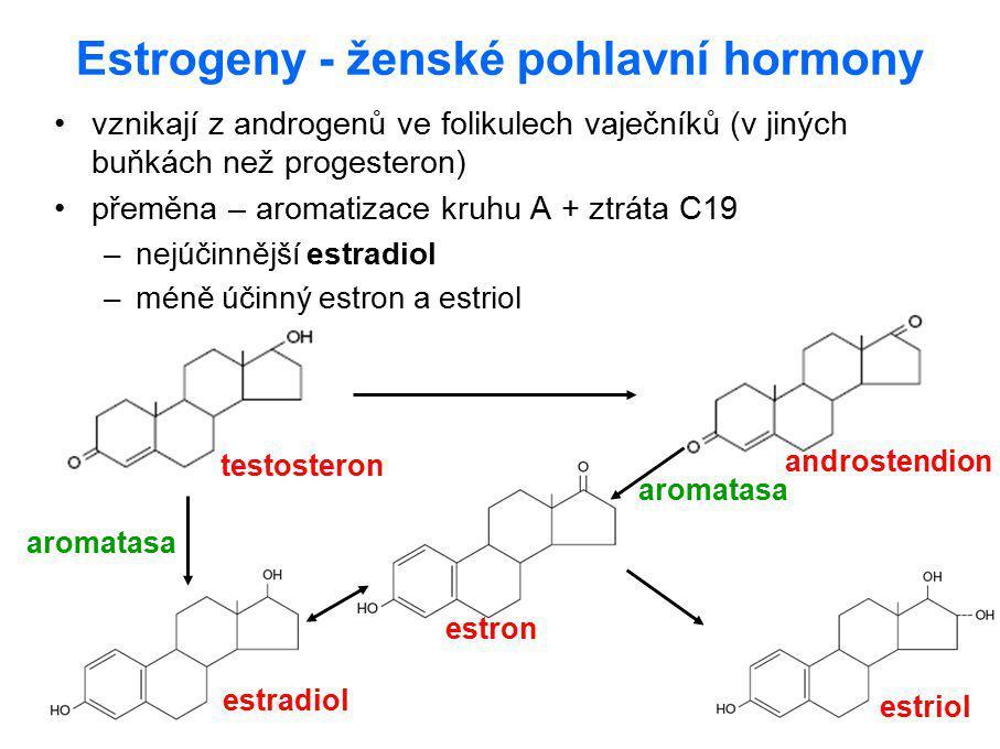 Estrogeny - ženské pohlavní hormony vznikají z androgenů ve folikulech vaječníků (v jiných buňkách než progesteron) přeměna – aromatizace kruhu A + zt