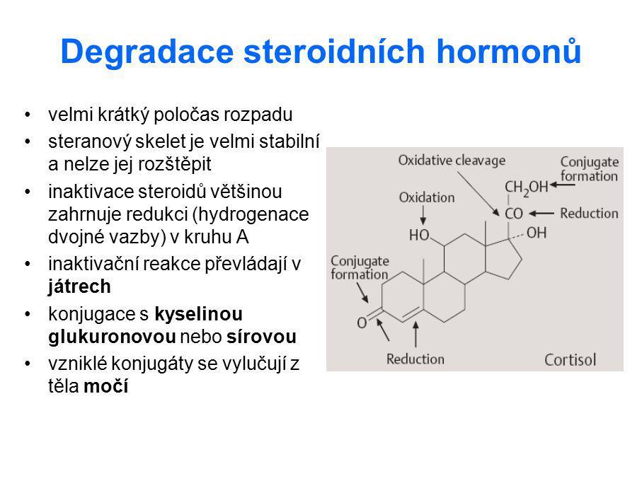 Degradace steroidních hormonů velmi krátký poločas rozpadu steranový skelet je velmi stabilní a nelze jej rozštěpit inaktivace steroidů většinou zahrn