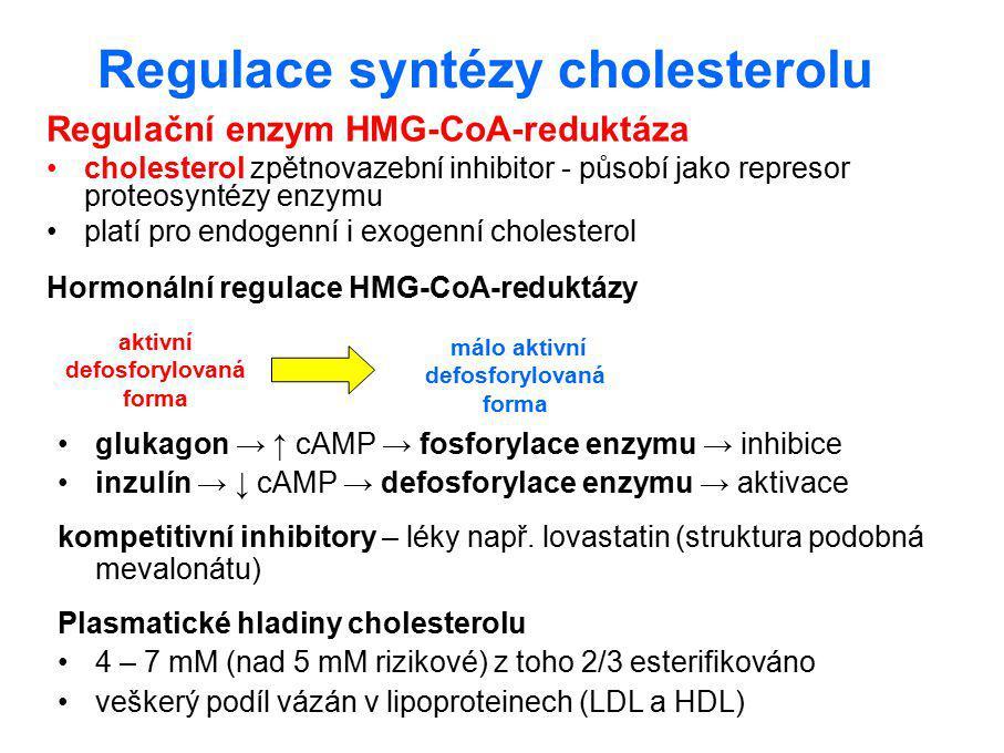 Regulace syntézy cholesterolu Regulační enzym HMG-CoA-reduktáza cholesterol zpětnovazební inhibitor - působí jako represor proteosyntézy enzymu platí