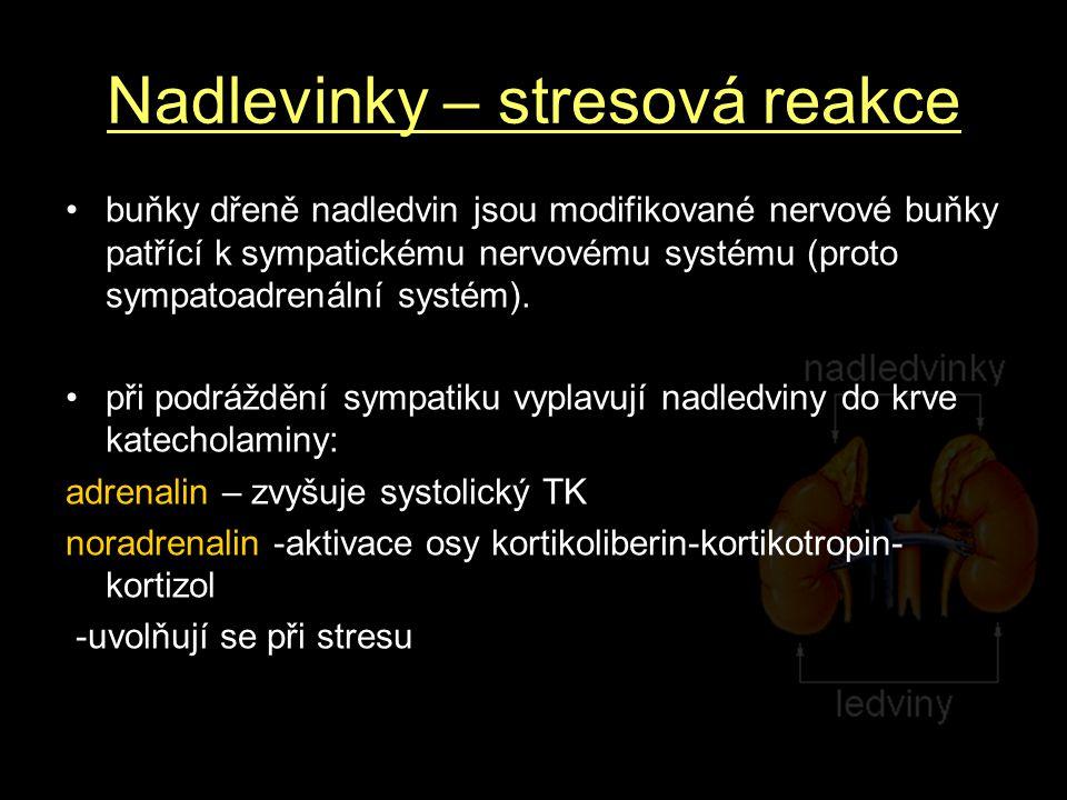 Nadlevinky – stresová reakce buňky dřeně nadledvin jsou modifikované nervové buňky patřící k sympatickému nervovému systému (proto sympatoadrenální systém).