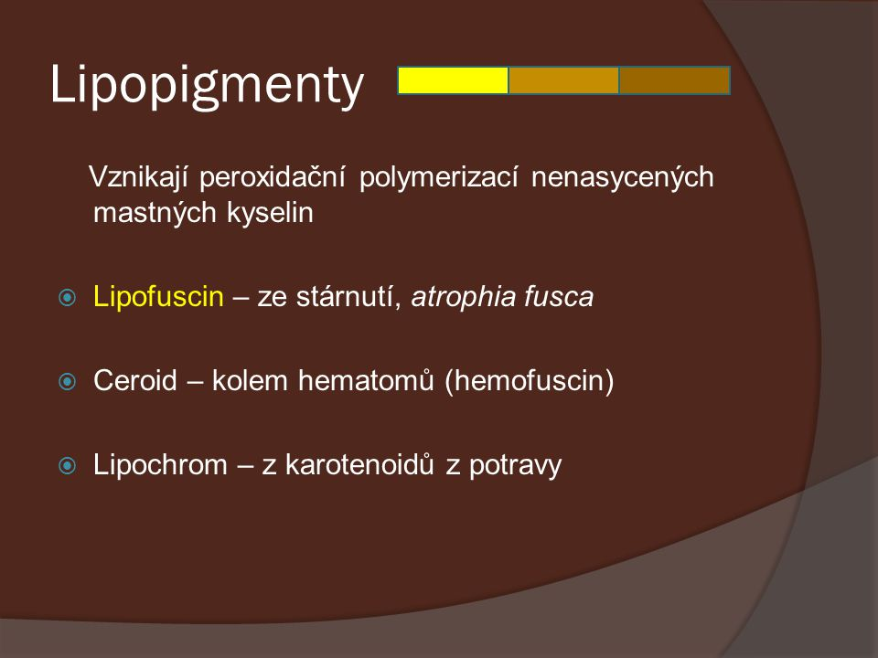 Lipopigmenty Vznikají peroxidační polymerizací nenasycených mastných kyselin  Lipofuscin – ze stárnutí, atrophia fusca  Ceroid – kolem hematomů (hem