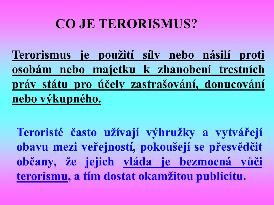 1. 1.domácí terorismus 2. 2.mezinárodní terorismus. Jsou dva základní typy terorismu: