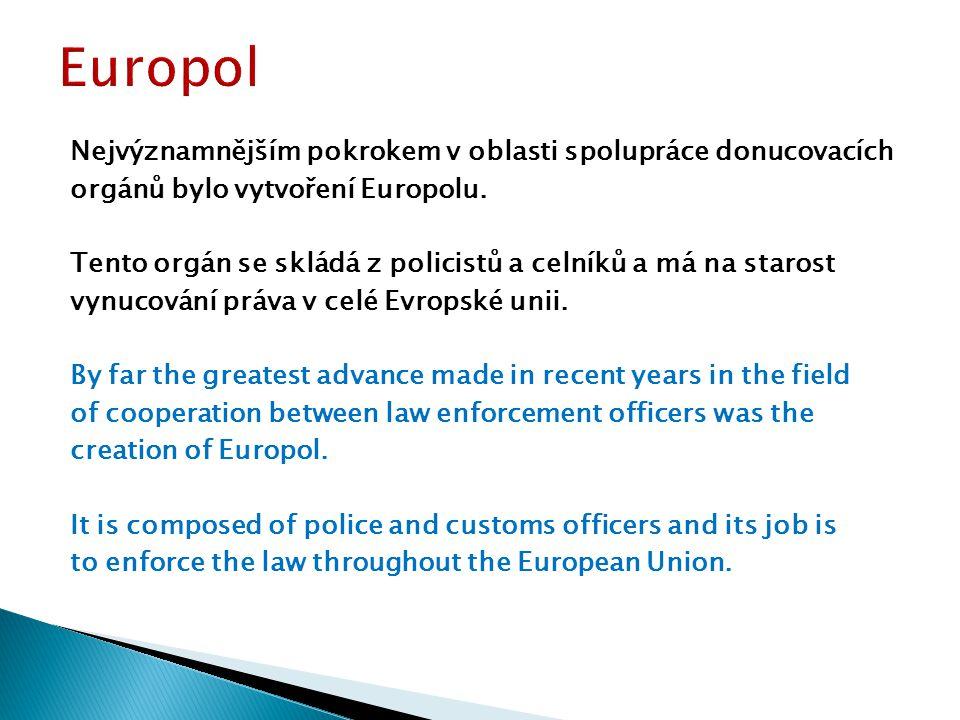 Nejvýznamnějším pokrokem v oblasti spolupráce donucovacích orgánů bylo vytvoření Europolu.
