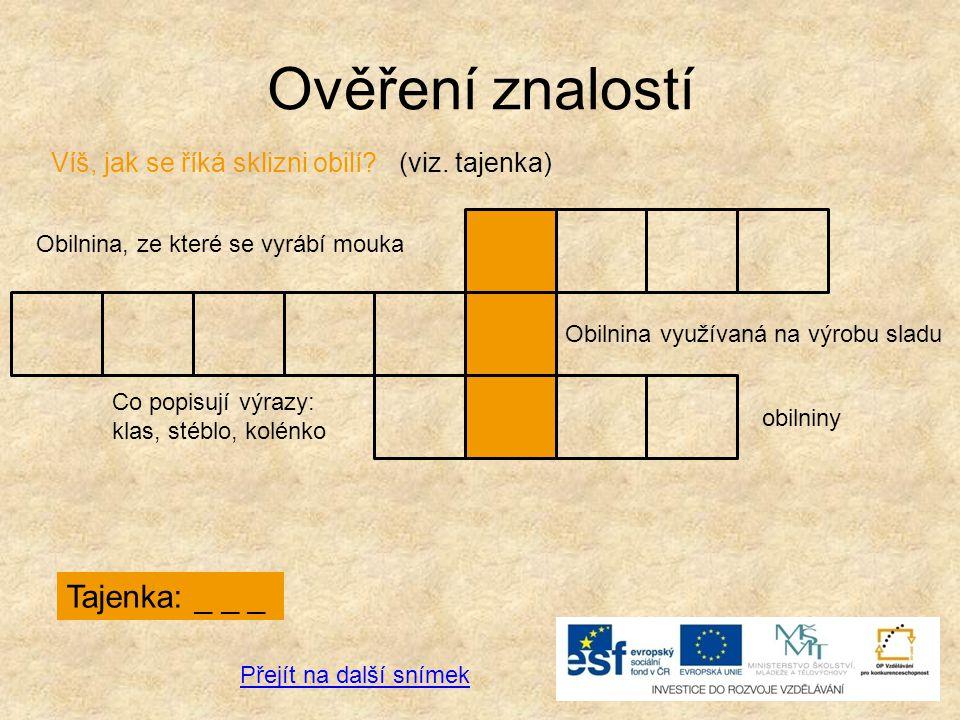 Ověření znalostí Tajenka: _ _ _ Obilnina, ze které se vyrábí mouka Obilnina využívaná na výrobu sladu Co popisují výrazy: klas, stéblo, kolénko obilni