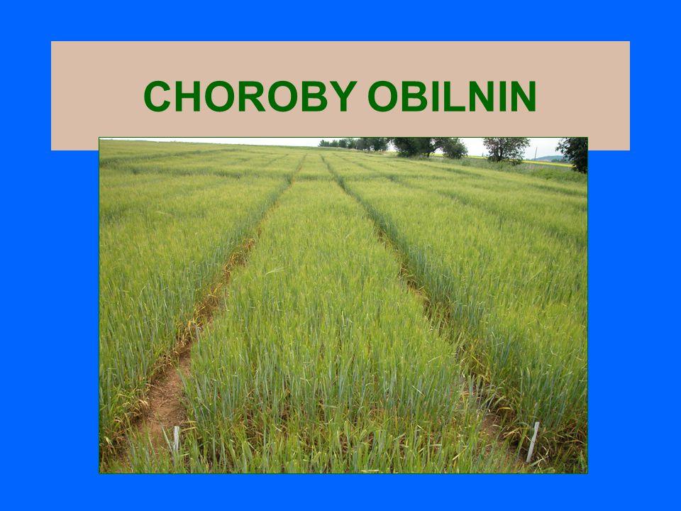 CHOROBY OBILNIN