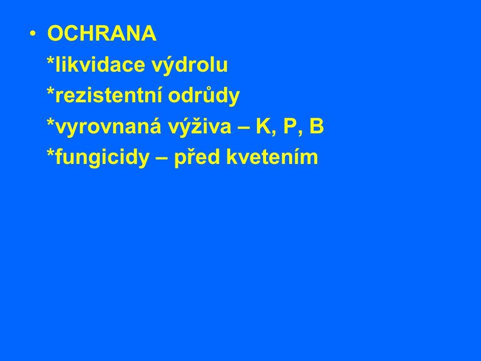 OCHRANA *likvidace výdrolu *rezistentní odrůdy *vyrovnaná výživa – K, P, B *fungicidy – před kvetením