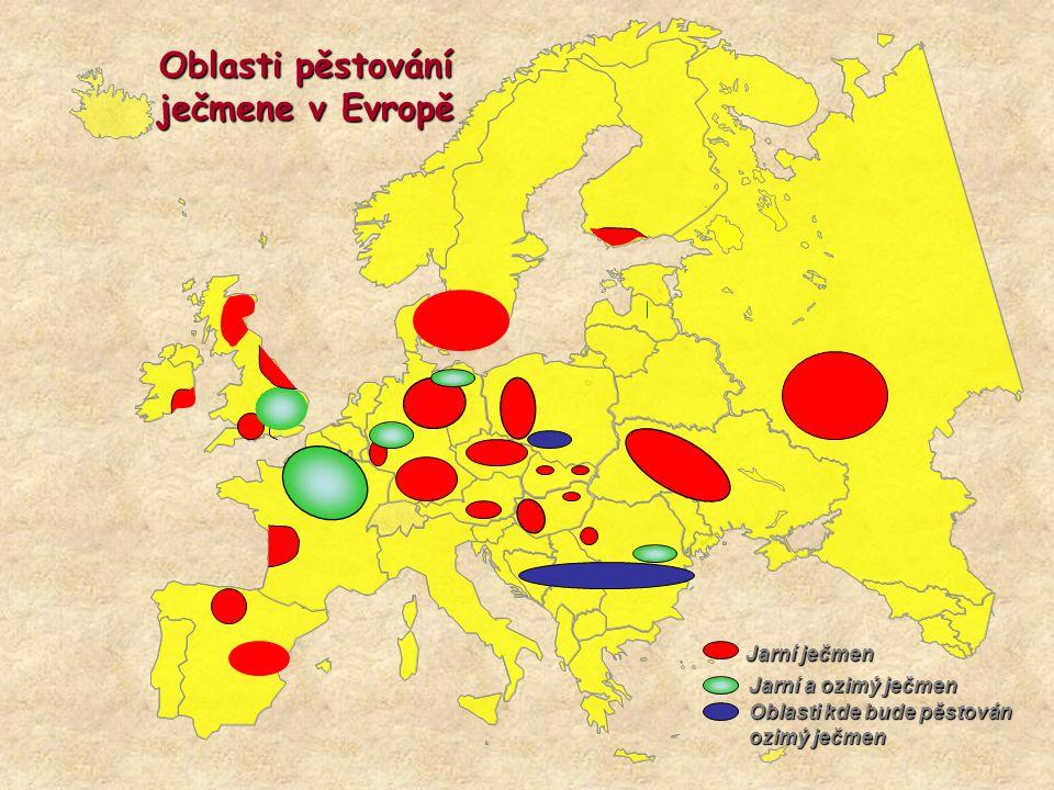 Oblasti pěstování ječmene v Evropě Jarní ječmen Jarní a ozimý ječmen Oblasti kde bude pěstován ozimý ječmen