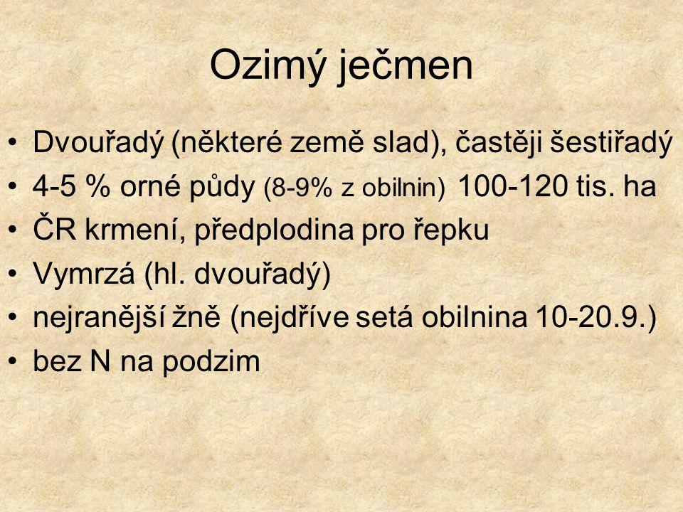 Ječmen jarní – Hordeum vulgare dvouřadý sladovnický a krmný 12-14 % orné p.