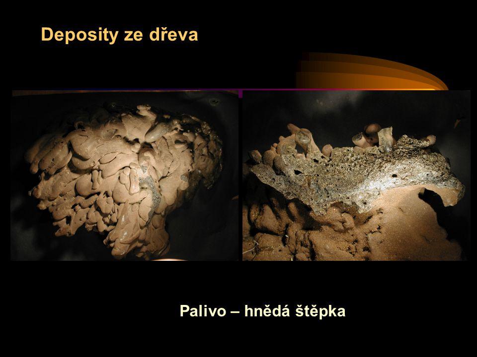 Deposity ze dřeva Palivo – hnědá štěpka