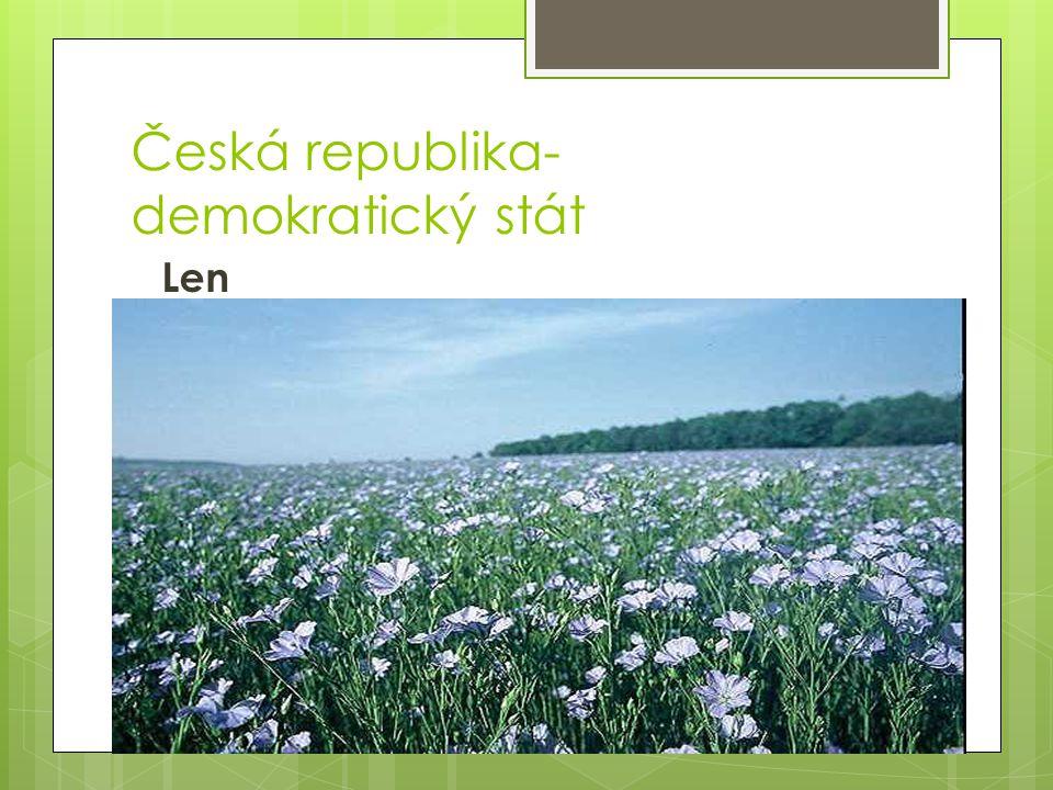 Česká republika- demokratický stát Len