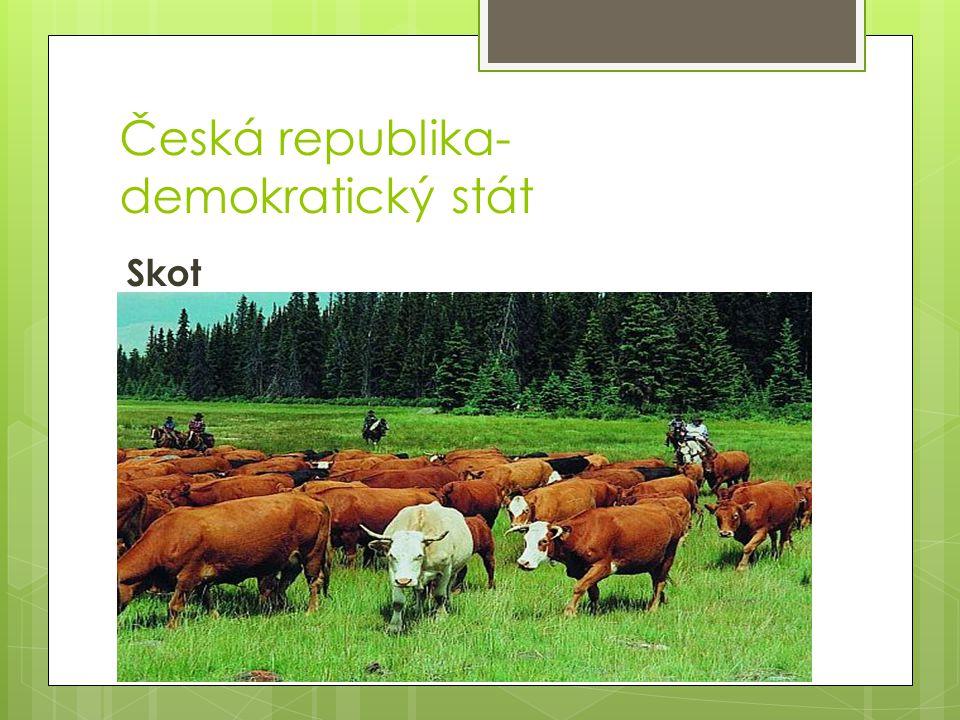 Česká republika- demokratický stát Skot